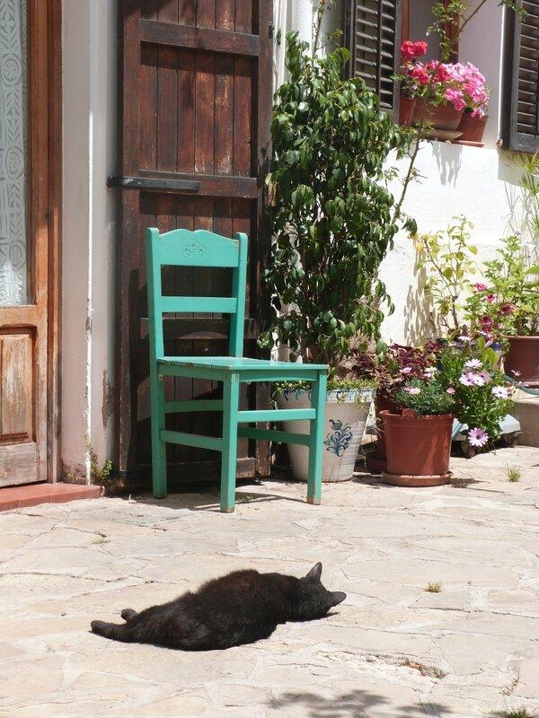 Ibiza farniente 4