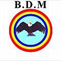 Kongo dieto 2308 : les enseignements du parti bdm/malongi ma 14 : kiame i vua, kieto ka vua ko !