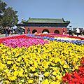 Pekin au fil de la visite(1)