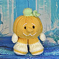 Pumpkin - knitting by post