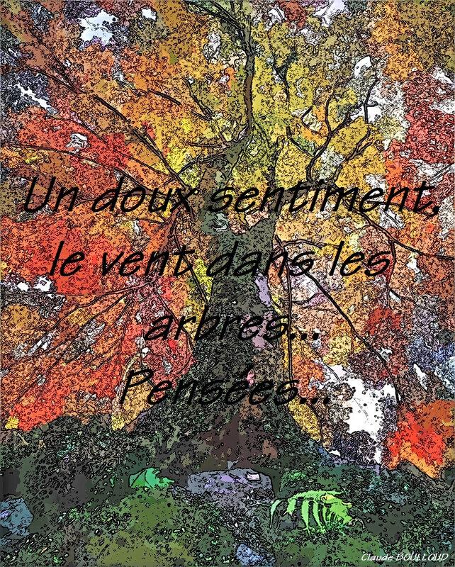 L'arbre_à_couleur_1024_cartoon_cb
