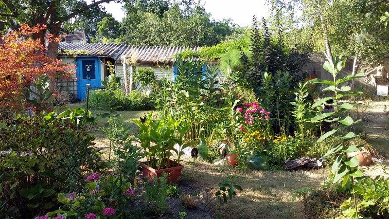 et le jardin ?