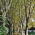Canal CASTETS-EN-DORTHE 10 et 14 octobre 2015 (31)