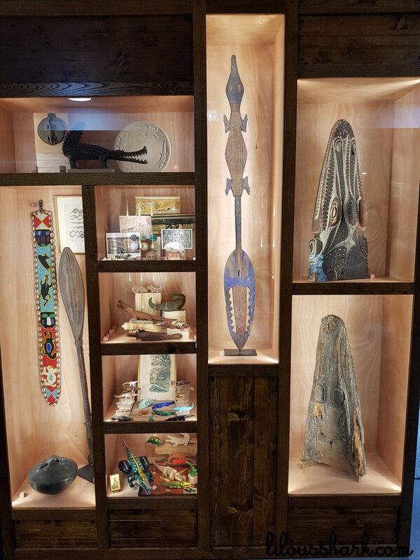 cabinet de curiosité ferme crocodile 3