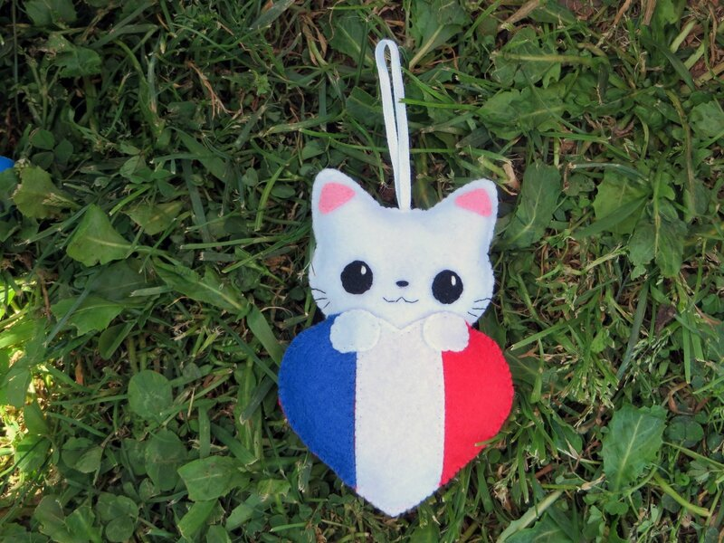 chat_france 002
