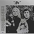 Ty segall & white fence – joy (2018)