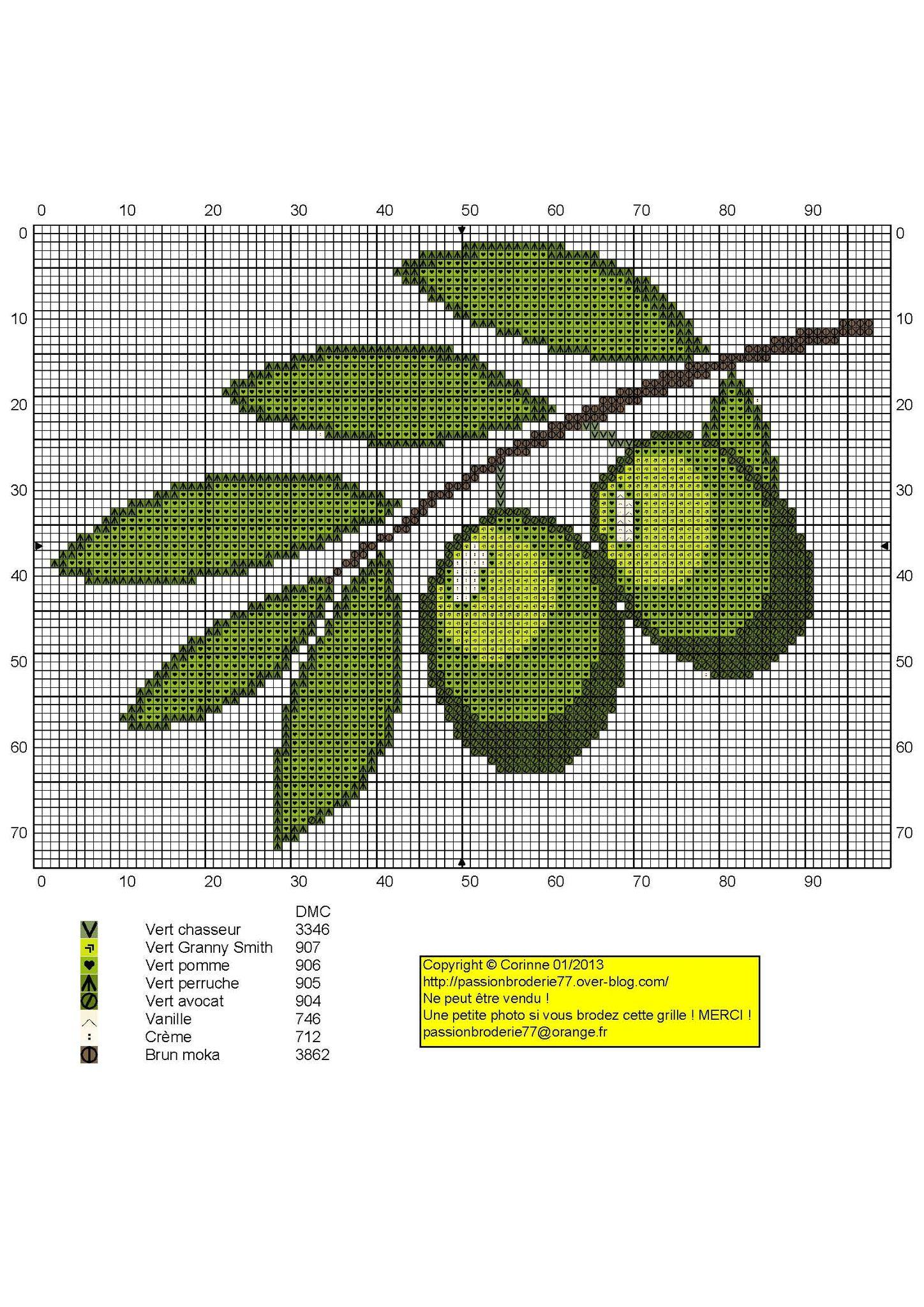 Branche d'olives