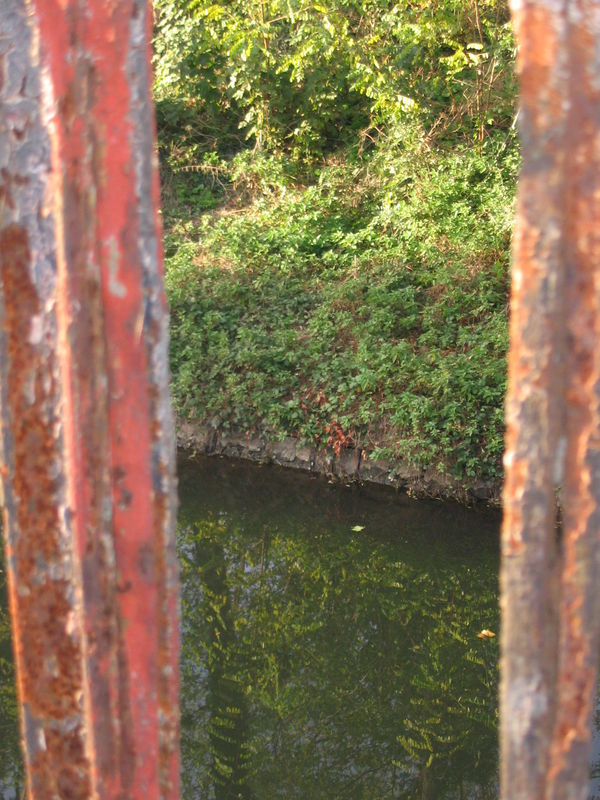 Roanne canal - 27/10/2009