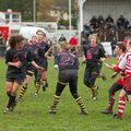 23IMG_0388T