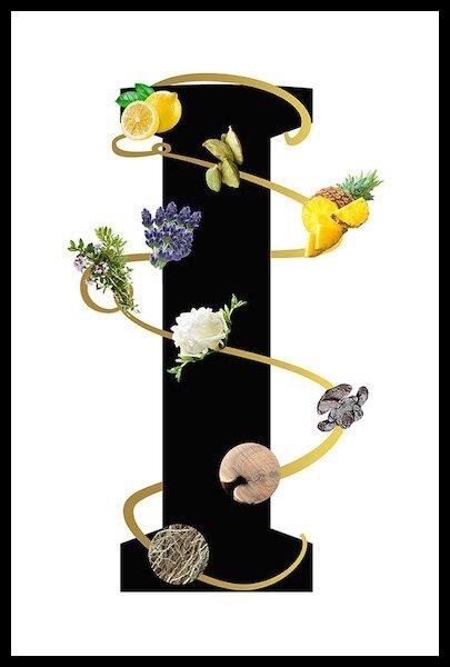 lalique terres aromatiques 2