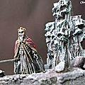 Roi des Morts PICT6818a