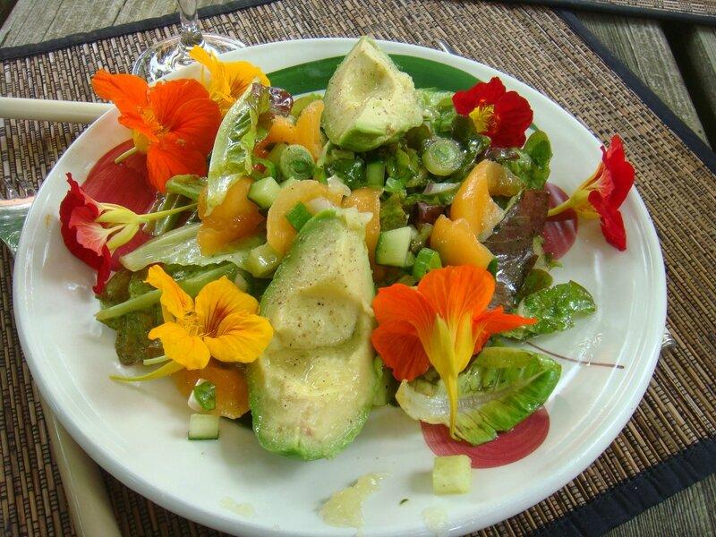 Capucines et salade du jardin...on mange aussi avec les yeux