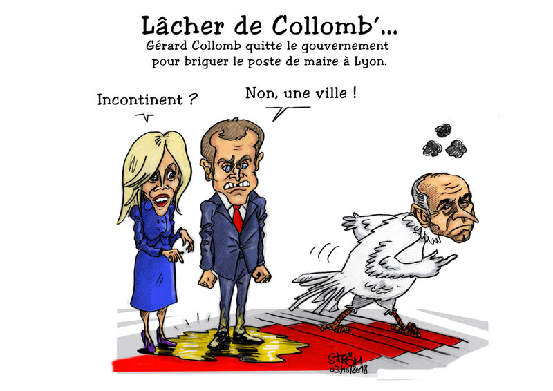 Lâcher de Collomb'-3oct 2018