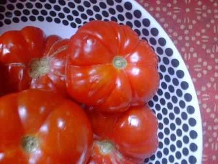 tomates_au_nom_oubli_