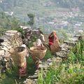 7- des femmes partent travailler dans la montagne