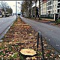 Avenue de la libération - t4 bus.