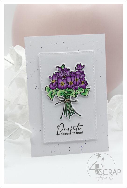 230221 - Cartes Violettes - AP P21 - J1 #3