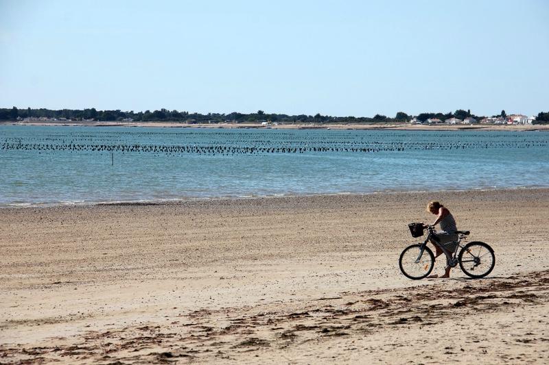13-Vélo, Noirmoutier 08-15_2105
