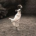 danse02