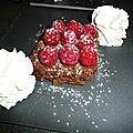 Pave chocolat framboise