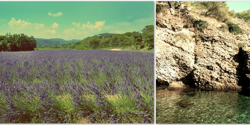 montage provence