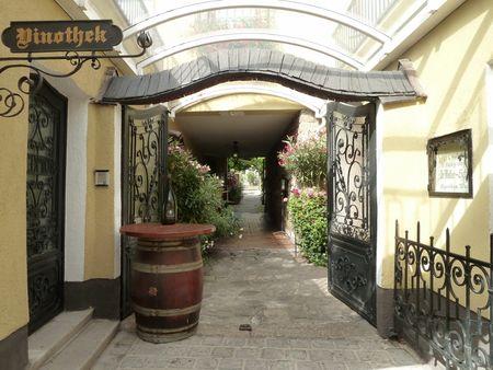 Wien_Grinzing_Village_Vigneron___Copie__800x600_