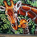La girafe et son girafon