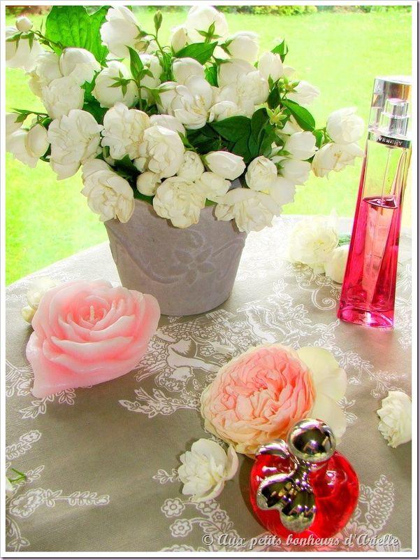 Roses, pivoines et seringat (2)