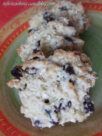 Cookies_avoine_raisins_029_canal