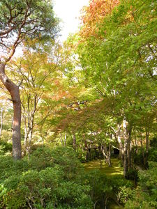 Japon_Kyoto_2009_1997