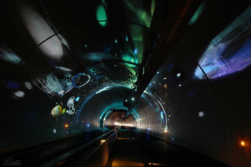 Tunnel étoiles_14 20 01_8026