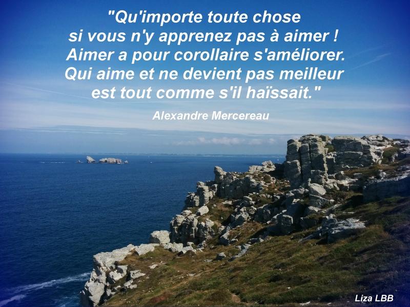17 Alexandre Mercereau
