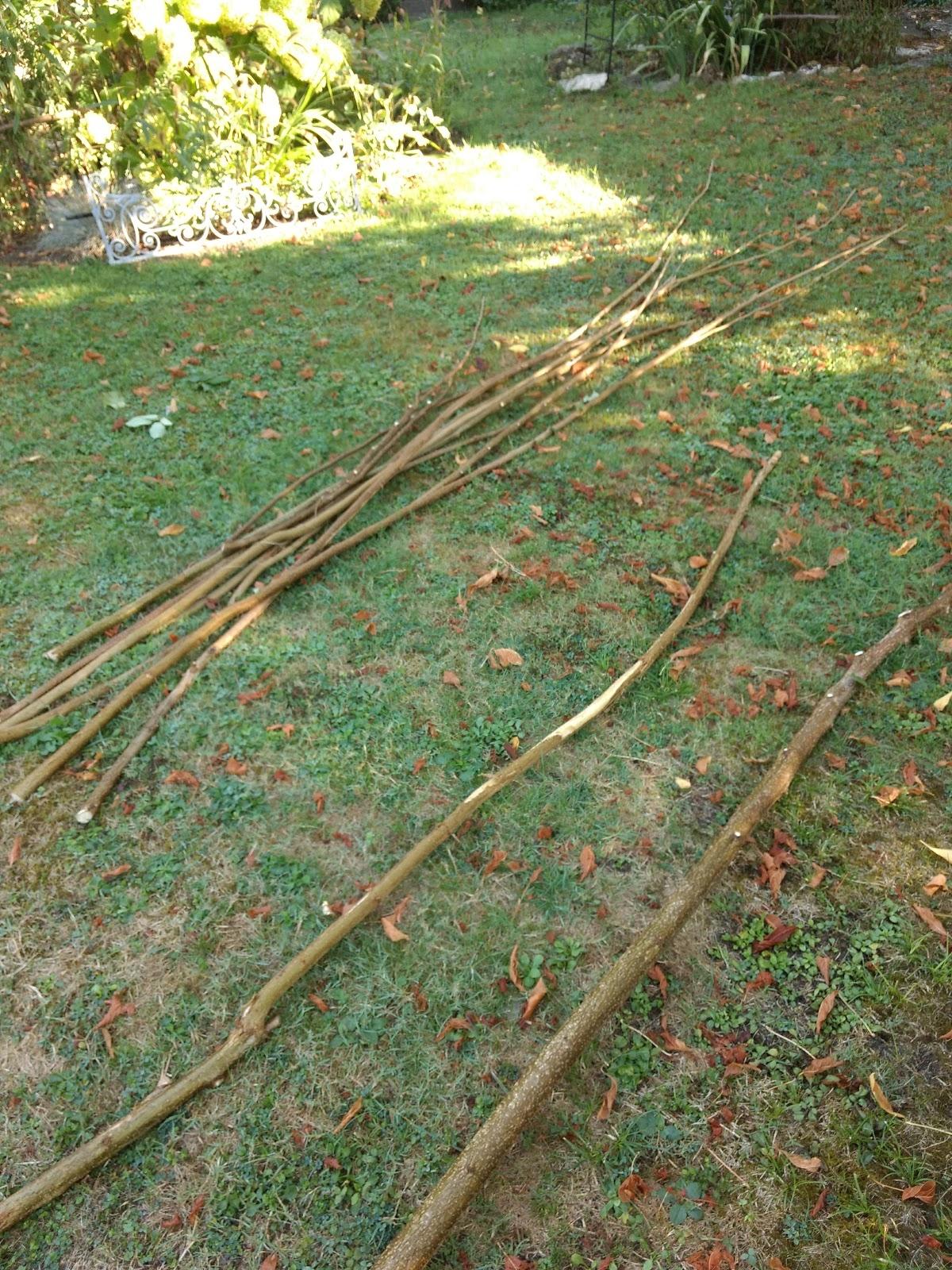 Faire Une Palissade Avec Des Branches réaliser un plessis en noisetier - arrosoirs, pivoines et