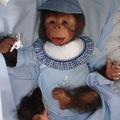 kouky bébé singe reborn n1
