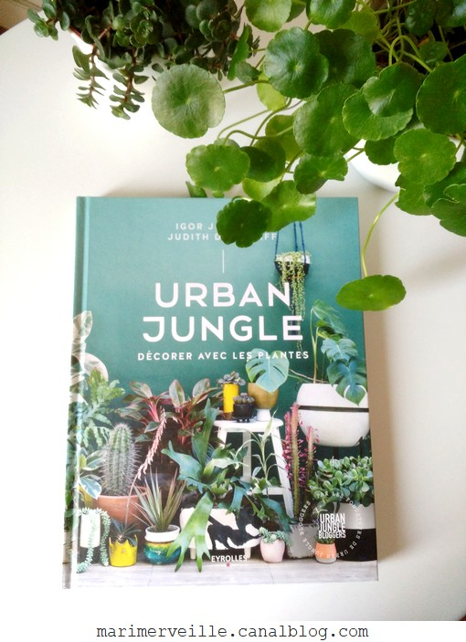 Urban jungle - Eyrolles - blog marimerveille