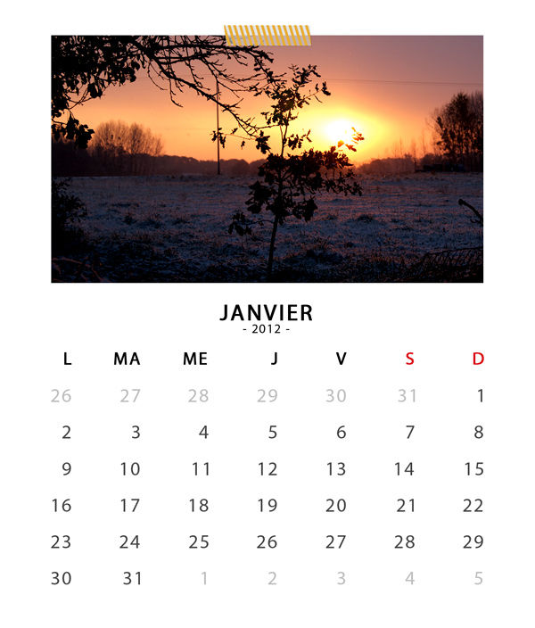 01_sc_cdcasecalendar2012_january