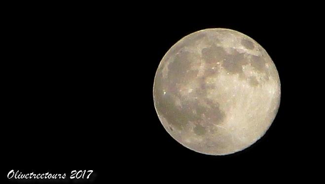 Pleine Lune / Full Moon