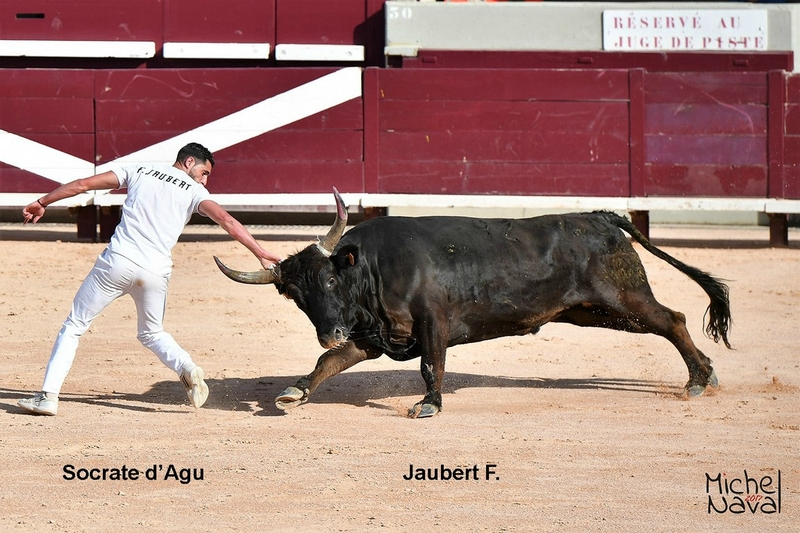ISTRES 30