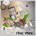 Chatpitre