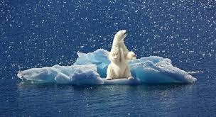 Δράση : « Κλιματική αλλαγή; Γίνε μέρος της λύσης. Είναι στο χέρι σου»
