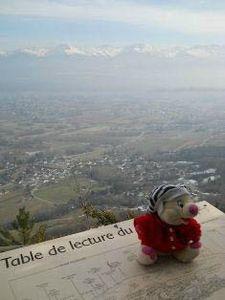 leonie table