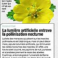 pollution lumineuse-Science & Vie No