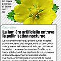 pollution lumineuse-Science & Vie No