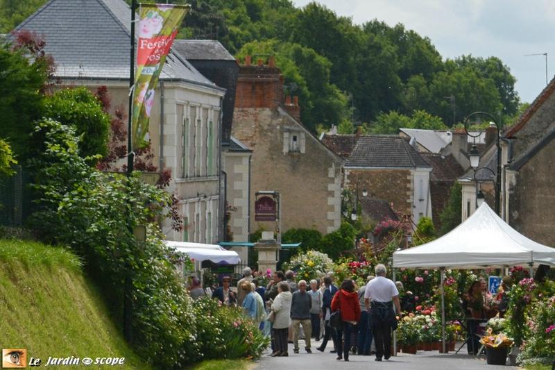 Chédigny, le village de roses