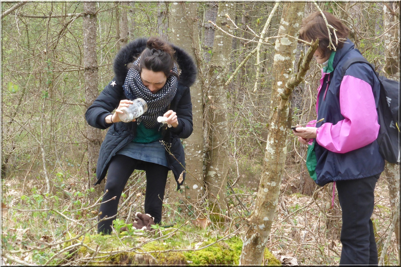 Geocaching foret d'Orleans (6)
