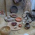 Parc samara : le musée