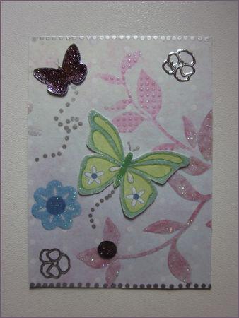 papillons2