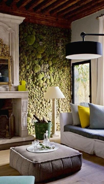 peaceful-indoor-living-wall-designs-for-any-home-11