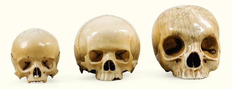 Trois crânes en ivoire d'éléphant, Allemagne, XVIIe-XVIIIe siècle
