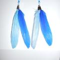 plumes cobalt et bleu clair avec rocailles